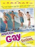 Another Gay Sequel : Gays gone wild ! : Affiche