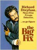 The Big Fix : Affiche