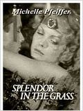 Splendor in the Grass (TV) : Affiche